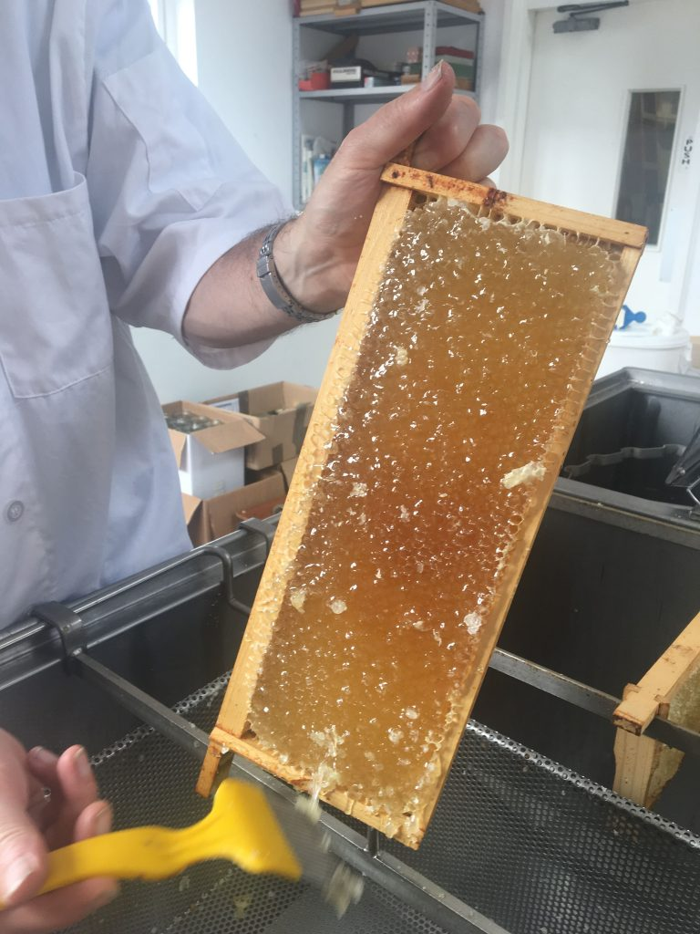 4 Extracting honey min