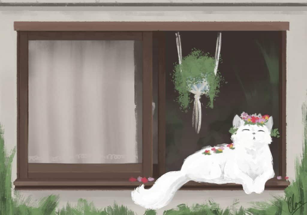 rsz 2020 02 27 flower cat